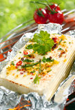 Feta cheese or halloumi on a barbecue Royalty Free Stock Photos