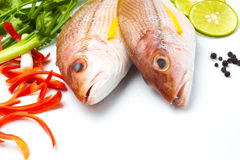 Delicious portion of fresh fish fillet with aromatic herbs spice. S and vegetables healthy Royalty Free Stock Photos