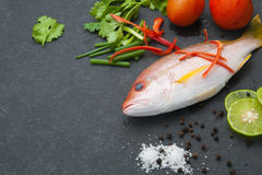 Delicious portion of fresh fish fillet with aromatic herbs spice. S and vegetables healthy Royalty Free Stock Images
