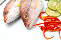 Delicious portion of fresh fish fillet with aromatic herbs spice. S and vegetables healthy Royalty Free Stock Image