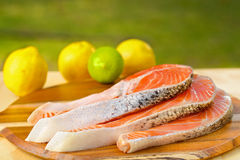 Delicious  portion of fresh salmon fillet on a Stock Images