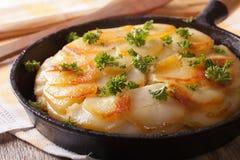 Delicious potato gratin in a pan close-up. horizontal Royalty Free Stock Photos