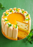 Delicious pound cake Charlotte Royalty Free Stock Images