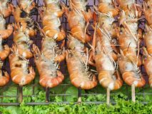 Delicious prawn on the grill Royalty Free Stock Photography