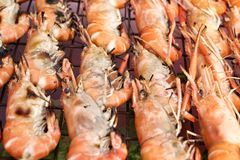 Delicious prawn on the grill Royalty Free Stock Photo