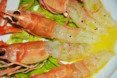 Delicious prawns and salad background stock image