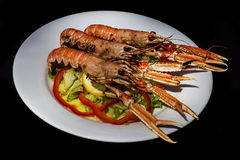 Delicious prawns with vegetables Royalty Free Stock Image