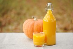 Delicious pumpkin juice from the fresh crop. Stock Photography