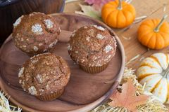 Delicious Pumpkin Muffins Royalty Free Stock Photo