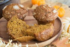 Delicious Pumpkin Muffins Stock Image