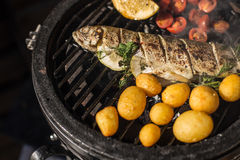 Delicious rainbow trout fish with tomatoes, potatoes and lemon cooking on hot flaming grill. Barbecue. Restaurant royalty free stock photo