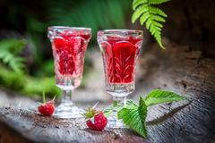Delicious raspberries liqueur made of fruits and alcohol Stock Photos