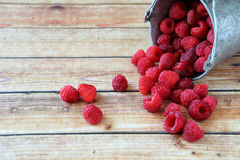 Delicious raspberries in a small bucket. Wooden background Royalty Free Stock Images