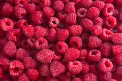 Delicious Raspberries Texture. Fresh raspberries background Stock Images