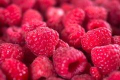 Delicious Raspberries Texture Royalty Free Stock Photo