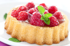 Delicious raspberry cake Royalty Free Stock Photos