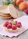 Delicious raspberry cake. Sweet tartelette with pudding and raspberries Royalty Free Stock Photos