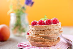 Delicious raspberry cake. Sweet tartelette with pudding and raspberries Stock Photos