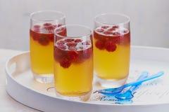 Delicious raspberry cocktail or dessert Stock Photos
