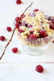 Delicious raspberry dessert with cookies Royalty Free Stock Photos