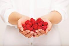 Delicious Raspberry for Dessert Stock Photography