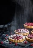 Delicious raspberry mini tarts on dark background Stock Images