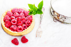Delicious raspberry pie Stock Images