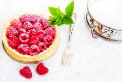 Delicious raspberry pie Stock Images