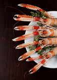 Delicious Raw Langoustines Royalty Free Stock Image