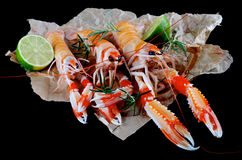 Delicious Raw Langoustines Royalty Free Stock Photo