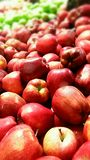 Delicious red apple Royalty Free Stock Photos