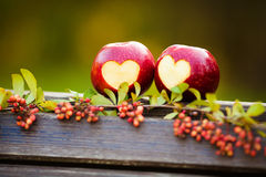 Delicious red apple with symbolic heart cutout. On rough Stock Photo