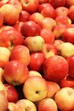 Delicious red apples Royalty Free Stock Photos