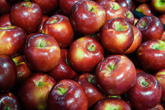 Delicious red apples at the Farmers` market. Market display of fresh organic apples, a dietary choice for children and adults alike. A very popular fruit, which Royalty Free Stock Photo