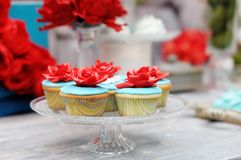 Delicious colorful cupcakes Stock Photography