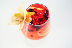 Delicious red cocktail with fruits. In studio Stock Images