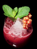 Delicious red cocktail on the rocks with mint Stock Images