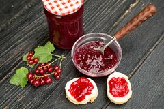 Delicious Red Currant Jam. Delicious Homemade Red Currant Jam. Canned Summer for cold seasons royalty free stock photo
