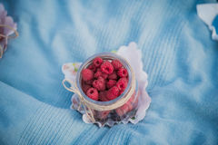 Delicious red raspberries laying in a small jar during picnic in park outdoors.  Royalty Free Stock Images
