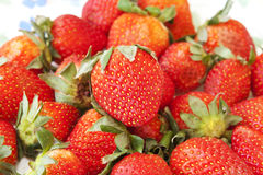Delicious Red Strawberries. Photo of Delicious Red Strawberries stock image