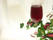 Delicious red wine for one. A single glass of delicious red wine set amongst colorful silk ivy against an illuminated white background. Plenty of room for your Stock Photography