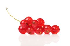 Delicious redcurrants stock image