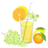 Delicious refreshing drink. In a glass of natural fruit juice, a piece of mandarin, lemon, orange, grapes. Vector illustration vector illustration