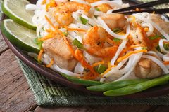 Delicious rice noodles with seafood and chicken closeup Stock Images