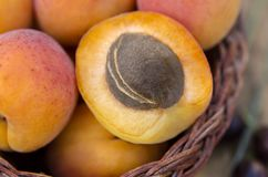 Delicious ripe apricots in a basket on rustic background. Health stock photography
