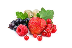 Delicious ripe berries on a white background. Stock Images