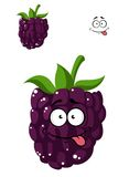 Delicious ripe blackberry Royalty Free Stock Images