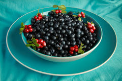 Delicious ripe blueberries in a blue Cup is on the  table Royalty Free Stock Images