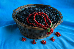 Delicious ripe blueberries in a wooden basket stands on a  table Stock Image