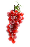 Delicious ripe bunch of grapes Stock Image